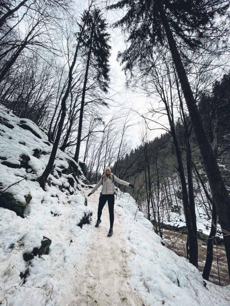 10_Riegrova_stezka_kocarek